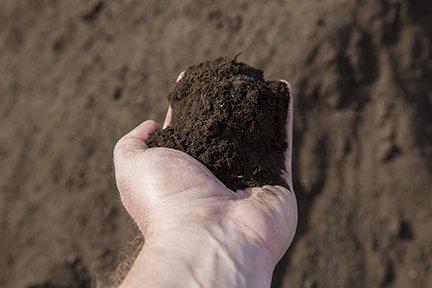 """Premium Compost 1/2"""" minus (Premium Organic)"""